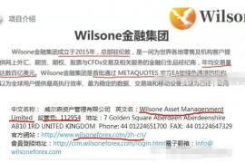 """【曝光】""""威尔森wilsone""""外汇传销骗局,国人搞的低级假冒伪劣项目!"""