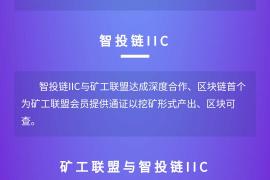 【曝光】火币iic矿工联盟?请问韭菜们,这与火币有什么关系?